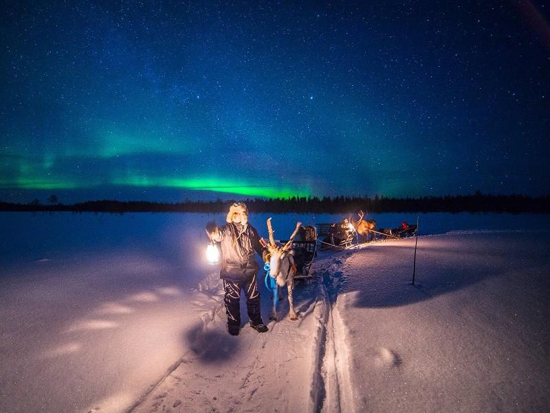 NORTHERN LIGHTS HUNTING BY REINDEER SLEDGE